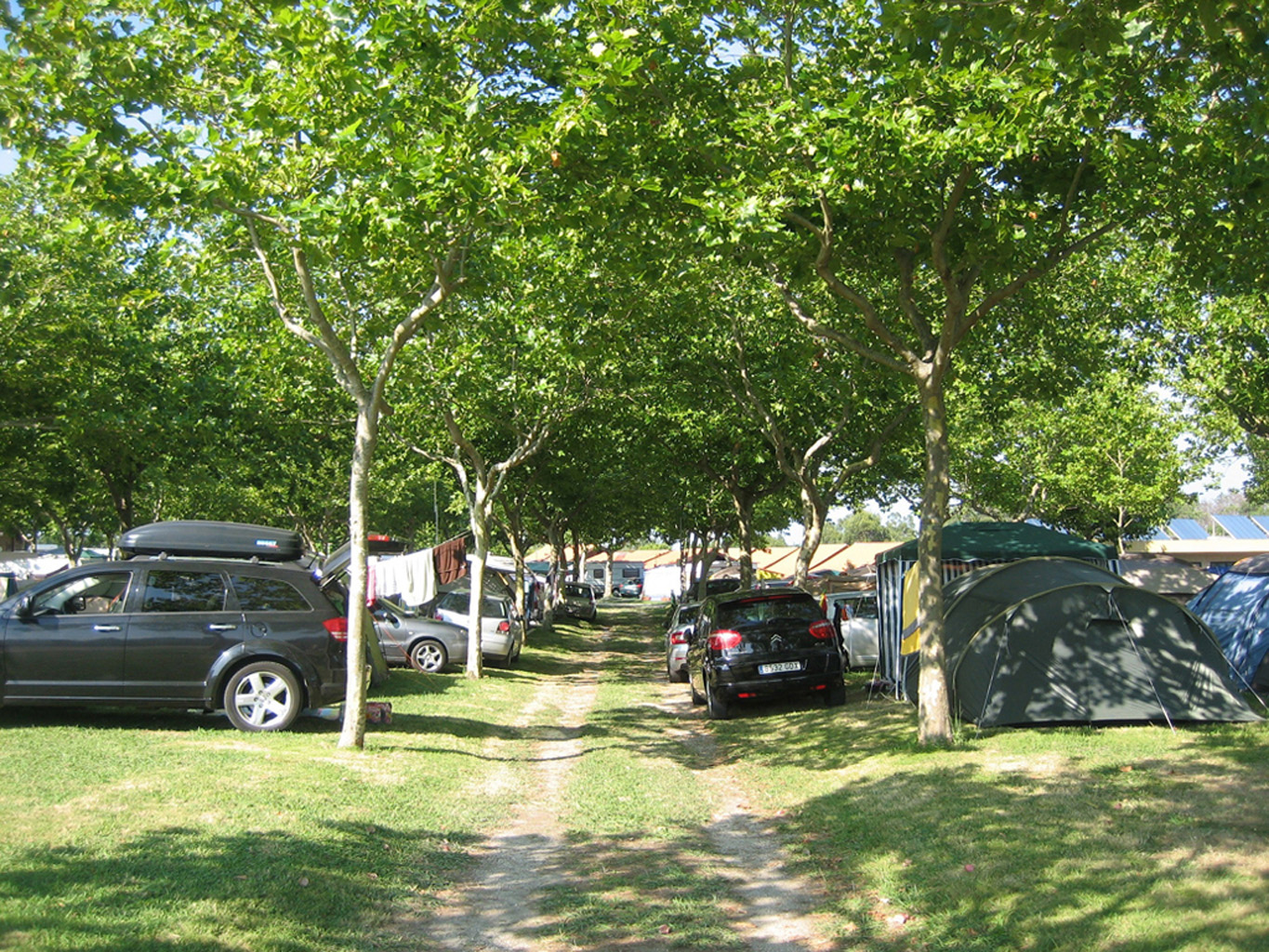 Parcela normal Camping Paisaxe II O Grove